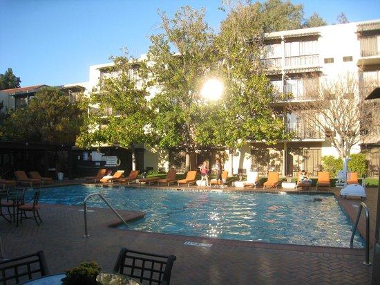 Sheraton Palo Alto Hotel:                   プール