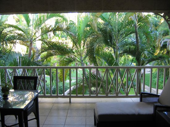 Coral Reef Club:                   garden view from room