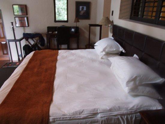 Kichaka Luxury Game Lodge:                   Room