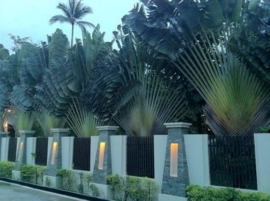 Duangjitt Resort & Spa:                   entering the hotel