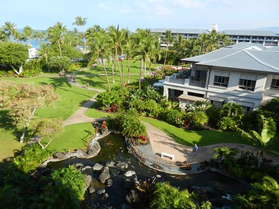 Fairmont Orchid, Hawaii:                                     View from our room
