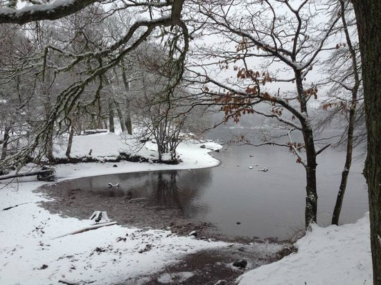 Pitlochry Backpackers Hotel: Snowy Loch Faskally