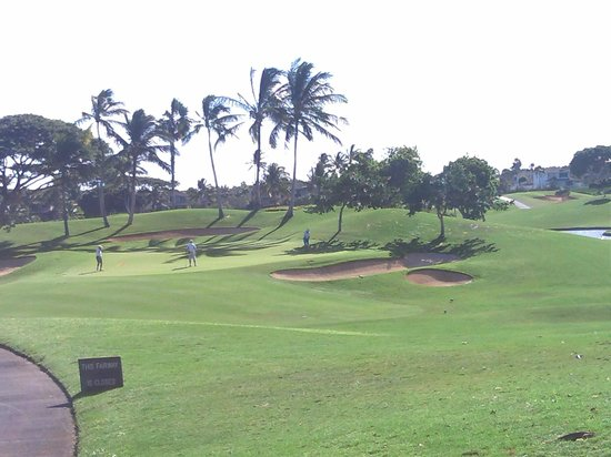 Ko Olina Golf Club :                   green