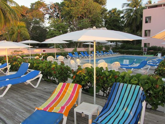 Butterfly Beach Hotel :                   The sun deck and pool area