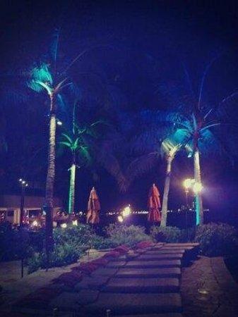 Sheraton Waikiki:                   インフィニティプール前