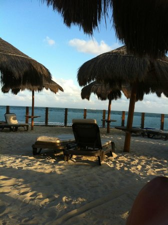 Ocean Maya Royale:                   privilege section