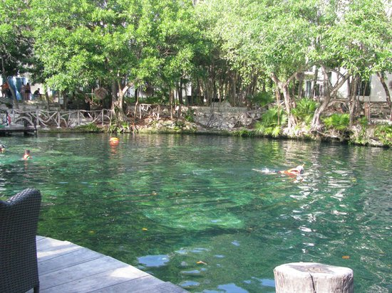Sandos Caracol Eco Resort:                   cenote on grounds for snorkeling and swimming
