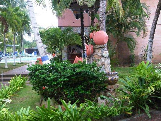 Hotel Coco Paraiso: Areas Verdes