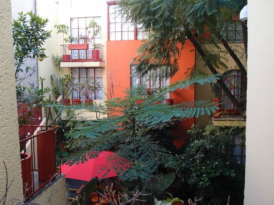 The Red Tree House:                   View from room