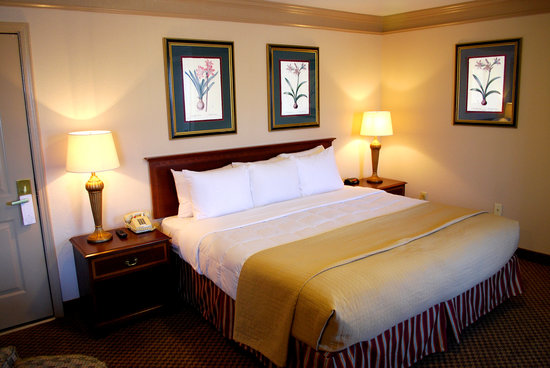 Castleberry Inn & Suites - GA Dome: King Room
