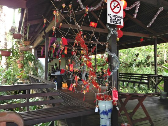 Abai Jungle Lodge:                   Chinese New Year decorations