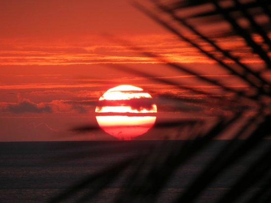 Mana Kai Maui:                   sunsets you see every night from your lanai