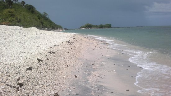 Roxas City, Philippines:                   a long mound of shells and corals swept up by the waves