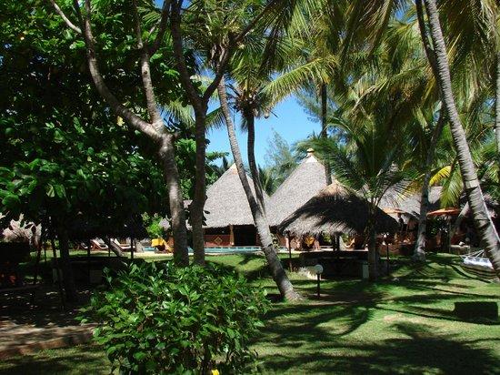 Orangea Village:                   Hotel