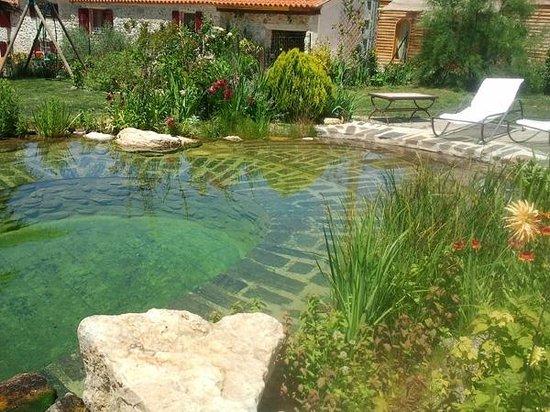 Mas du canigou prades france voir les tarifs et avis ranch tripadvisor - Tarif piscine naturelle ...