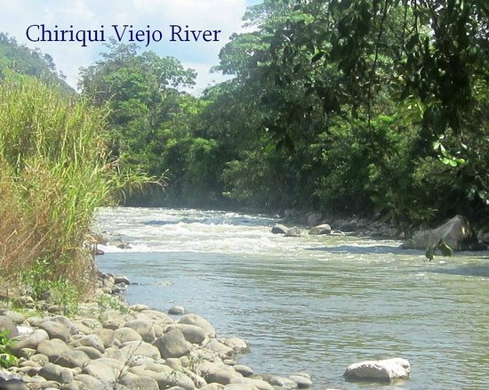 Chiriqui River Rafting:                   View from lunch break area of rapids