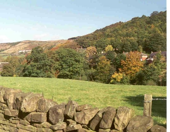 Rose Cottage B&B: View from house of Shibden Valley