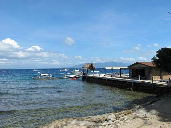 El Galleon Beach Resort & Hotel:                   The jetty and dive centre