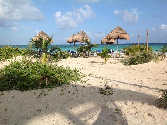 Almaplena Eco Beach Resort :                   view from the hammocks