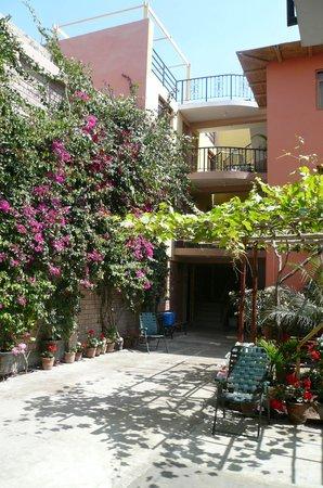 Hostal Tambo Colorado:                   Patio fleuri