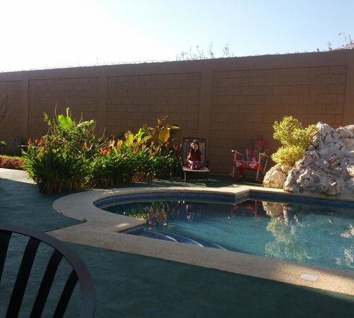 Casa Marin B&B :                                                       Hanging out by the pool