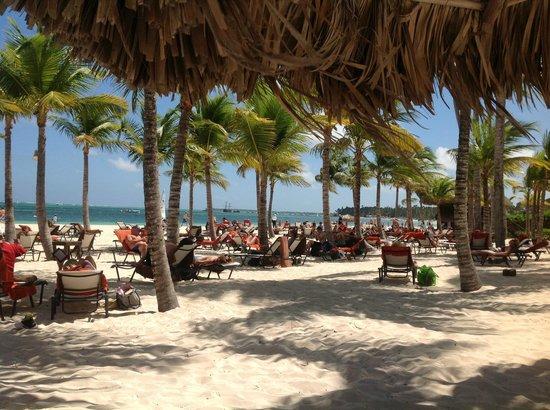 Secrets Royal Beach Punta Cana:                   Playa                 