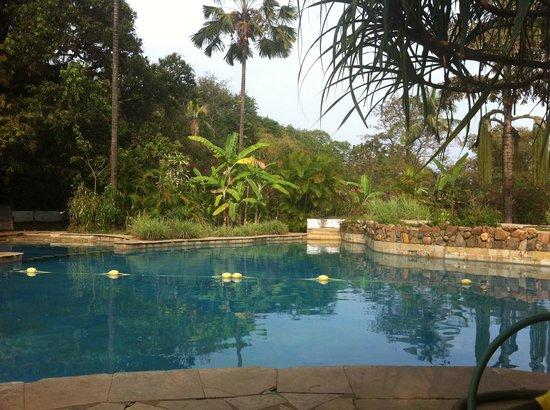 Laguna Anjuna:                   Pool