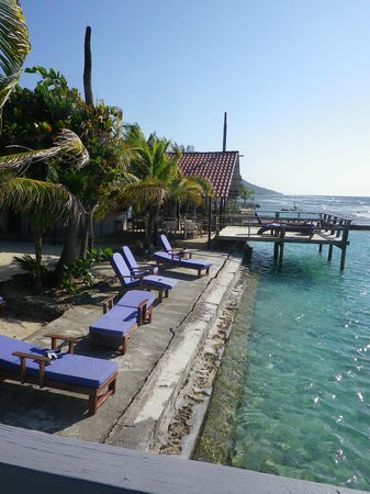 Reef House Resort:                                     Chairs to sun yourself on by the turtle pool.