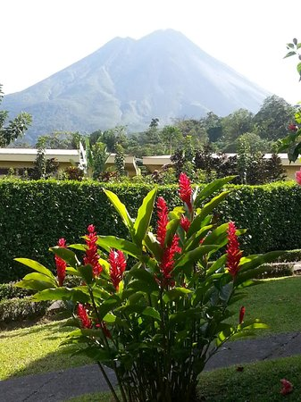 Arenal Volcano Inn:                                     volcano with exotic flowers in foreground