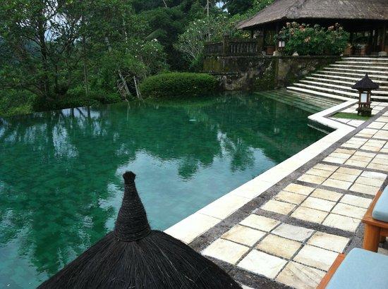 Amandari:                   Pool