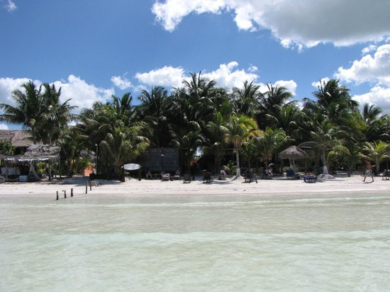 Beachfront La Palapa Hotel Adult Oriented:                   Hotel