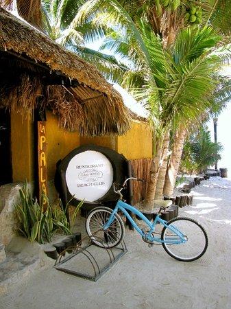 Beachfront La Palapa Hotel Adult Oriented:                   Eingang Hotel