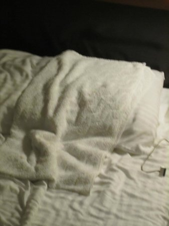 La Quinta Inn & Suites Manhattan:                   how my bed looked; they gave me extra ttowels to catch the leak!