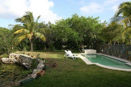 Villas Picalu B&B Boutique : Cenote und Pool