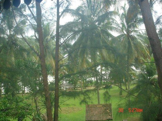 Tanjong Jara Resort:                   View from my first floor room                 