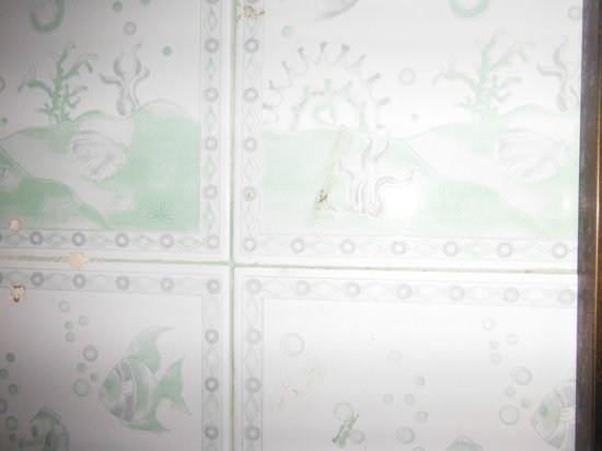 Phi Phi Don Chukit Resort: Mosquito splattered on bathroom tiles