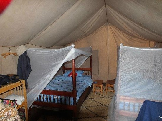 Cuckooland Lodge :                                     Our tented bedroom.