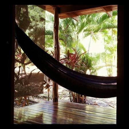 Hotel Luz de Luna:                   veiw from my cabin