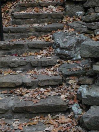 Devil's Den State Park: steps built by CCC