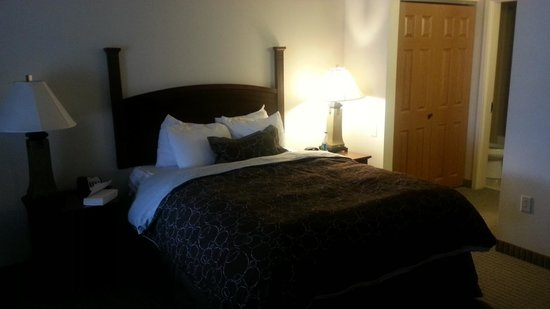 Staybridge Suites Indianapolis - City Centre : King Size Bed