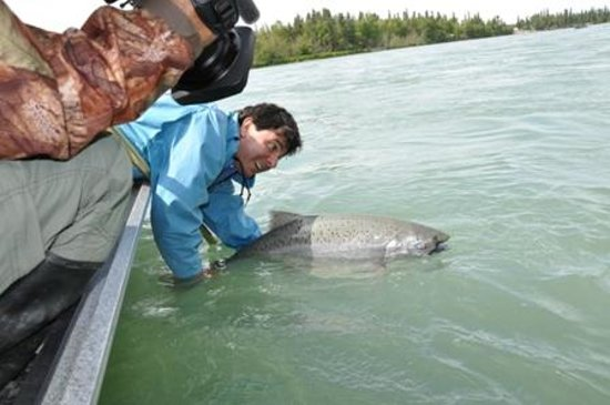 Jimmie Jack's Alaska Lodge: Releasing a Kenai King