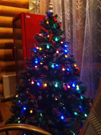 Timan House:                                     NY tree