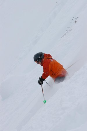 Selkirk Snowcat Skiing:                   Steep and Deep
