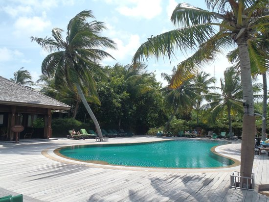 Kuredu Island Resort & Spa: Kuredu : piscine O'Resort
