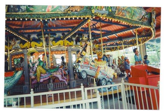 Fox Trot Carousel