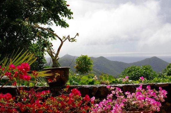 Villa Rainbow:                                                                                           Nuages