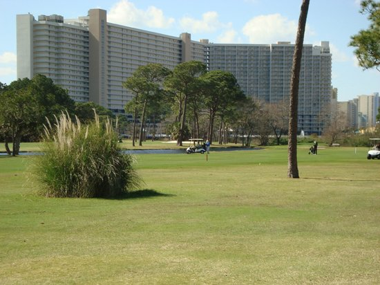 Signal Hill Golf Course:                   Beachside condo behind course