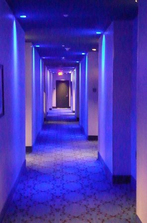 The Saint Hotel, Autograph Collection: Hallway
