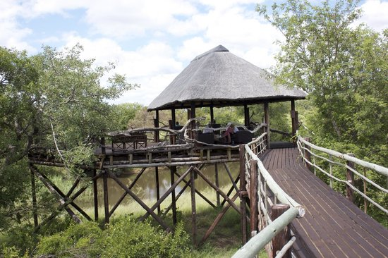 Ezulwini Game Lodges:                   A nice place to relax and watch for giraffes