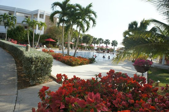 Decameron Baru:                   Vista da piscina 3